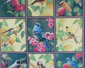 Fruit of the Vine fabric panel birds From Springs Creative