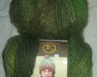 Amazing Lion Brand Wool Blend Self-Striping Fiber, Rainforest, 145 yards