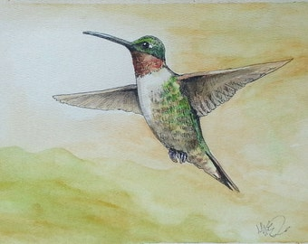 Broad Tailed Hummingbird 2 Pen and Ink Watercolor Painting