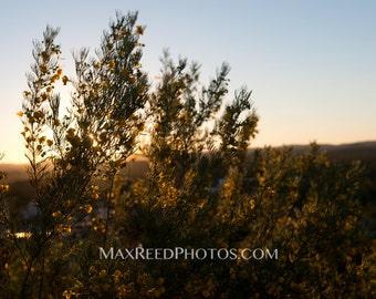 Sunset  | Travel Series