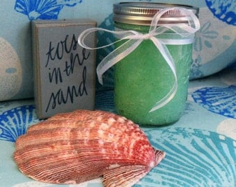 Coconut Lime Sea Salt Body Scrub 12oz