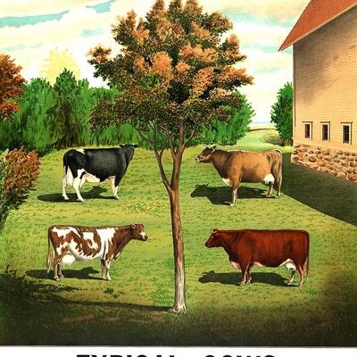 DairyFarmAntiques