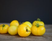 Morden Yellow Tomato Seeds -- EARLY PRODUCER
