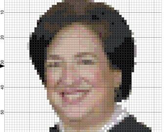 DIGITAL PATTERN: Supreme Court Justice Elena Kagan