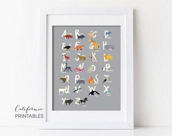 Animal Alphabet Printable, Alphabet Printable, Animal Alphabet Print, Animal Letters, Kid's Room Wall Art, Nursery Wall Art, Alphabet 202