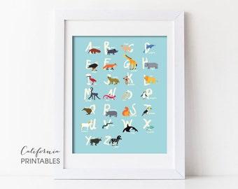 Animal Alphabet Printable, Alphabet Printable, Animal Alphabet Print, Animal Letters, Kid's Room Wall Art, Nursery Wall Art, Alphabet 203