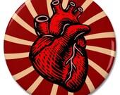 "Anatomical Heart 2.25"" Pinback Pin Button Badge"