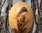 Winter Junco Bird Ornament egg gourd