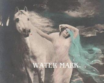 Gypsy Girl*Woman*White horse blue veil*Bohemian**BOHO*Quilt art fabric block*Quilts,Pillows,Sachets,Frame