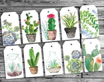 Botanical cacti gift tags | Birthday gift tags | Printable Botanical cards | succulents  green  | Nature woodland gift tags | Printable