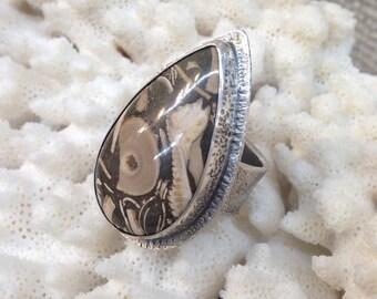 Primordial Ocean Ring