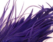 12 PURPLE Hair Feathers, Thick Feather Hair Extension, 3 to 5 Inches Long