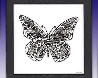 Framed Butterfly Pen and Ink Print