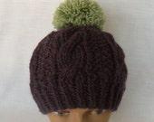 Purple Green Chunky Knit Hat Wool