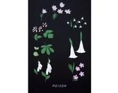 Poison Plants Print