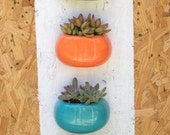 Reserved Listing for CarisJo 3 wall planters