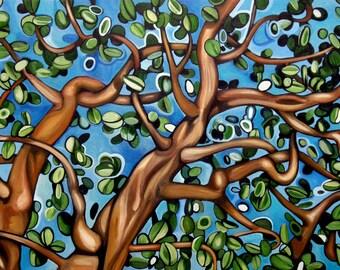 "CANVAS PRINT Arbutus Tree  Painting 12x8"", 18x12"", 24x16"", 30x20"", 36x24"", 42x28"", or 48x32"""