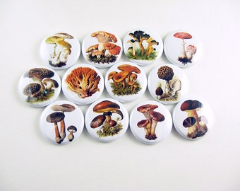 12 Mushroom Fridge Magnets, Mushroom Decor, Morel Mushroom, Fungus, Refrigerator Magnets, Pin Back Buttons, Wine Charms, Bottle Cap 1107