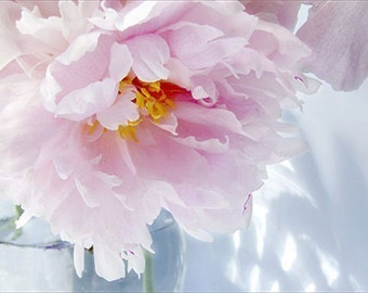 Pink Peony Art, Peony Print, Peony Photograph, Peony Wall Art,  Floral  Art Print, Shabby Chic Home, Flower Photography