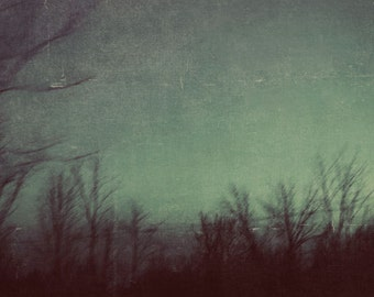 Dark Landscape, Surreal Photography, Teal Green Photograph, Night Sky, Bare Tree Branches, Abstract, Modern Home Decor, Rich Green, Winter