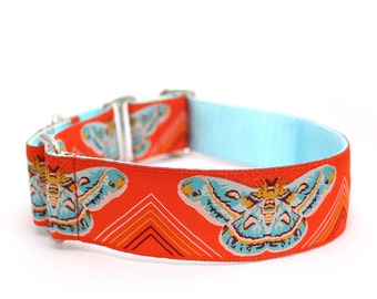 """1.5"""" or 2"""" Dog Collar Clarice Starling martingale or buckle collar"""