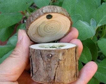 Miniature Rustic Natural Bark Cypress Log Wooden Box by Tanja Sova