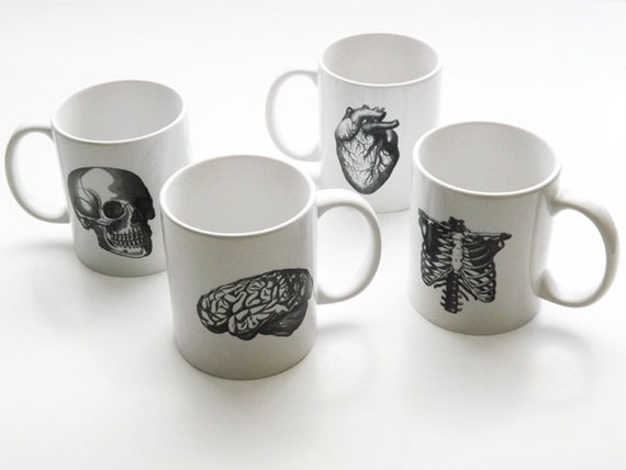 Anatomy Mug set novelty gift him Father's Day physical therapist coffee cups anatomical heart medical decor gothic skull science human body