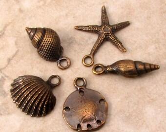 Seashell Charm Set, Greek Casting, Brass Ox, 5 Pieces, M439