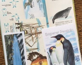 South Pole Adventure Vintage Antarctica Collage, Scrapbook and Planner Kit Number 1965