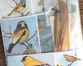 Yellow Birds Vintage Nature Collage, Scrapbook and Planner Kit Number 2107