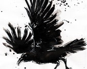 Raven art - Ink drawing on canvas A4 - Raven with big wings