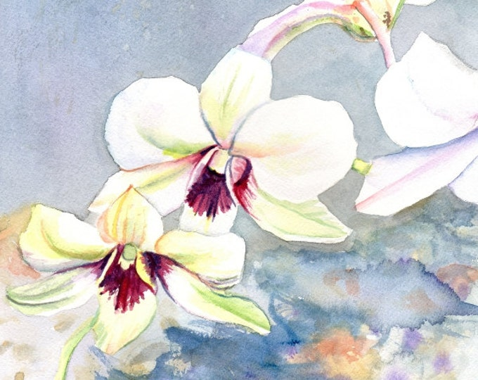 Kauai Orchid Festival - Fine Art Print 8x10 - Tropical Flower Art - White Orchid Painting - Hawaii wall art - Hawaiian home decor