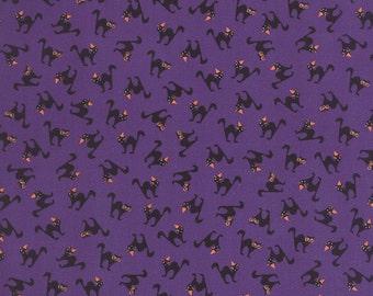 Spooky Delights, Scaredy Cats Potion Purple (2902 16)