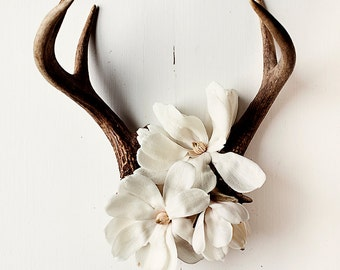antler botanical_no_5