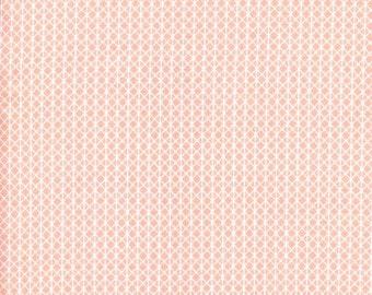 Netorious Anna Peach - Cotton + Steel Basics- 5000-014