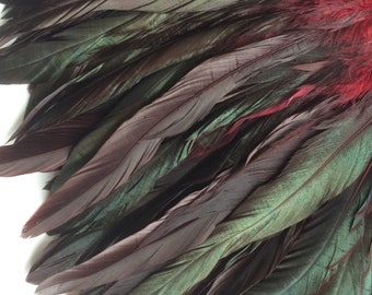 COQUE TAIL FEATHERS Loose / Iridescent Black and Burgundy / 183
