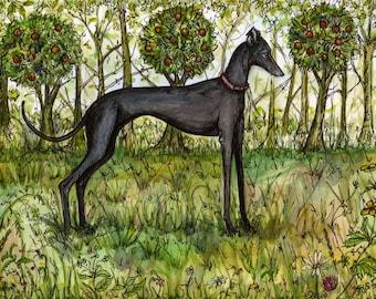 Dog Art Print -Italian Greyhound