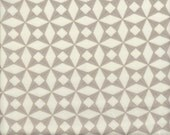 Moda Fabrics 2wenty Thr3e Triangle in Gray - Half Yard