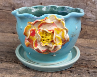 Turquoise flower pot with yellow rose