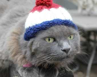 New England Patriots Inspired Beanie - Tom Brady Inspired Mini Hat - Football Throwback Cat Hat - Dog Sport Team Hat - Pet Football Hat