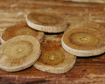 Oak wood buttons/slices - 6 pc. set