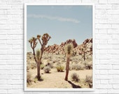 BLACK FRIDAY - California Photography, Joshua Tree Photograph, Desert Photo, , Brown Tone, Yucca Tree, Home Decor - The Yucca Tree