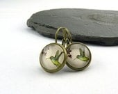 Little Green Hummingbird Cabochons Earrings. Printed 12 mm Cabochons under Glass in aged brass settings. Nickel free earrings with leverback