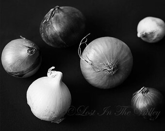 Still Life Photo, Food Photography, Kitchen Art, Onion Print, Fine Art Photograph, Minimalist Style, Farmhouse Decor, White, Black, Grey