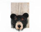 Black Bear Head - Needle Felted Faux Taxidermy