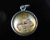 Bubble Charm, Sterling Silver, Scorpio, Zodiac, Horoscope, The Scorpion Desire