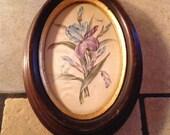 Small Oval Framed Iris Print