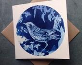 Fairy Wren, Greetings Card