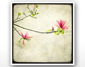 """Deluxe Signed 8""""x8"""" Print - Branche de Magnolia"""