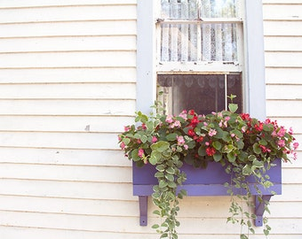 Cottage Window Photograph, Architecture Window Photography, Sweet Whimsical Rustic, Shabby Chic Decor, Flower Box, Flowers, Farmhouse Style